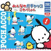 全套5款【日本正版】帕恰狗 公仔 扭蛋 轉蛋 POCHACCO 三麗鷗 TAKARA TOMY - 873676