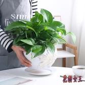 北歐簡約綠蘿陶瓷花盆 帶托盤家用大號特大號多肉花盆 BF22851【花貓女王】