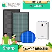 綠綠好日 抗菌 HEPA 濾芯 濾網 蜂巢顆粒 適 夏普 SHARP KC-A60T FU-H80 FP-J60