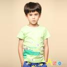 小魚鱷魚印花,純色短袖T恤