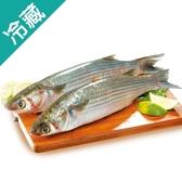 台灣去卵烏魚1~1.2kg/尾【愛買冷藏】