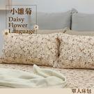 《40支紗》-麗塔LITA-精梳棉【小雛菊】單人床包枕套二件式