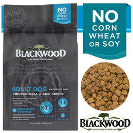 【培菓平價寵物網】BLACKWOOD 柏萊富《雞肉 & 米》特調成犬活力配方 1LB/450g