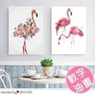 DIY手繪火烈鳥系列裝飾畫 數字油畫 40x50