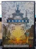 影音專賣店-P02-054-正版DVD-電影【奇光下的秘密】-奥克斯弗格雷 米莉森西蒙斯 茱莉安摩爾 蜜雪兒