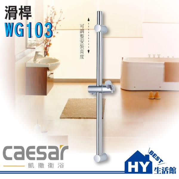 Caesar凱撒衛浴WG103滑桿【SPA淋浴用掛架升降滑桿組】不鏽鋼.ABS材質