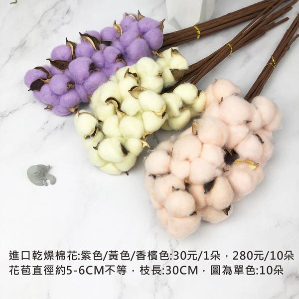 進口乾燥天然棉花多色單支-乾燥花圈 拍照道具 室內擺飾 乾燥花材 裝飾插花鄉村風-280元/10支