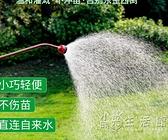大棚園林澆水長桿噴水槍園藝花灑澆花育苗槍噴頭澆菜農用灑水器 小時光生活館
