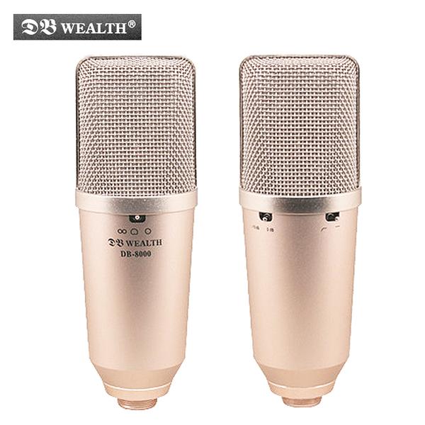★集樂城樂器★WEALTH DB-8000 大膜片多指向性錄音麥克風