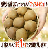 【果之蔬-全省免運】日本進口香川縣黃金奇異果約7~9入 (1kg±10%/原裝盒)