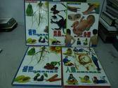 【書寶二手書T3/少年童書_WFB】植物的構造與養分_我們的身體_植物的構造與養分等_5本合售