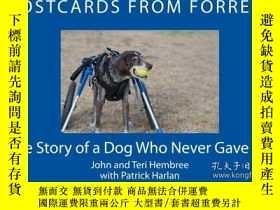 二手書博民逛書店Postcards罕見From Forrest: The Story of a Dog Who Never Gav