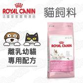 ROYAL CANIN 法國皇家 離乳貓 BC34 貓飼料 4kg X 2包