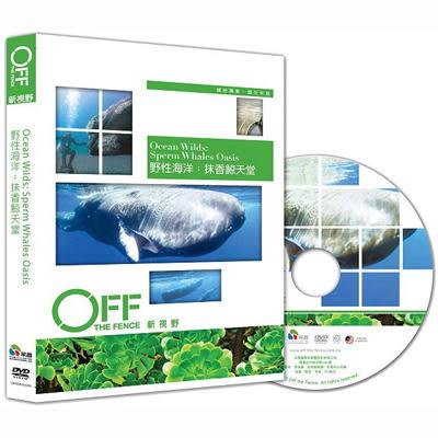 Discovery-野性海洋:抹香鯨天堂DVD