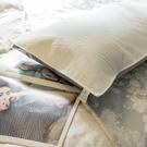 【防水】枕頭保潔墊 42cmX72cm 抗菌防螨、防污 可水洗 台灣製 棉床本舖