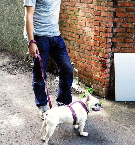 *~寵物FUN城市~*PPARK《殘線W系列》犬用 快扣拉繩【L號】台灣製作,品質保證