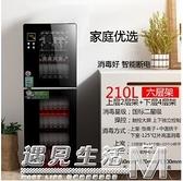 消毒櫃家用立式小型不銹鋼台式大容量商用廚房消毒碗櫃碗筷220V