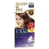 DARIYA沙龍級白髮專用快速染髮霜5自然棕