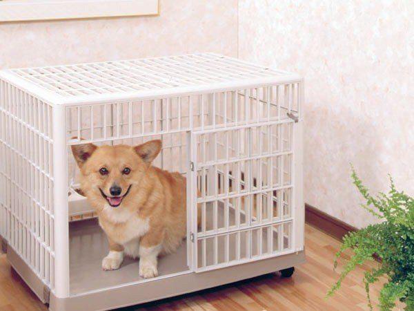 《48HR快速出貨》*KING*【IRIS】日本 IRIS-812(雙層) 犬貓室內專用籠