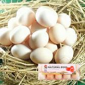 金鑽伊莎粉紅蛋3盒含運組