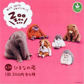 全套6款【日本正版】休眠動物園 P3 扭蛋 轉蛋 第3彈 睡覺動物園 熊貓之穴 ZooZooZoo - 825873