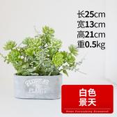 假草盆栽擺件仿真花客廳插花塑料假花室內茶几擺設裝飾仿真植物小