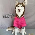 春季金毛幼犬襯衫大型犬衣服阿拉斯加薩摩寵物大狗衣服【小獅子】