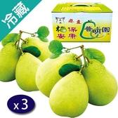 麻豆普明園文旦禮盒5台斤/盒X3【愛買冷藏】