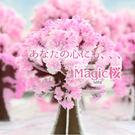 魔法櫻花 獨家櫻花 在家中盛開 神奇紙樹...