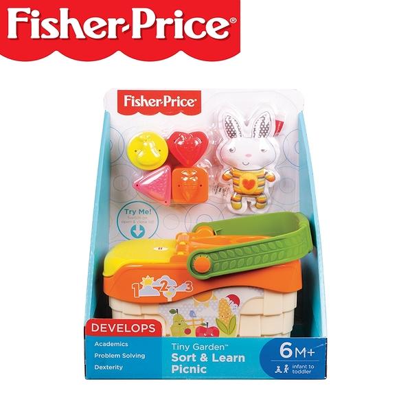 Fisher-Price 費雪 美國 音樂小小花園野餐組玩具 / 家家酒