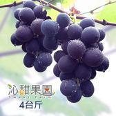 沁甜果園SSN.溪湖胡家葡萄(4台斤/箱)﹍愛食網
