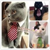 寵物貓咪領結領帶小狗狗領帶項圈頸圈飾品蝴蝶結【倪醬小舖】