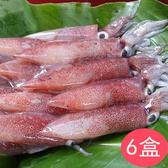 【鮮食優多】綠安 野生捕撈鮮凍小卷6盒(300g±10%/盒)