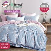 【R.Q.POLO 】使用3M吸濕排汗專利-花晨夕月 天絲兩用被床包四件組