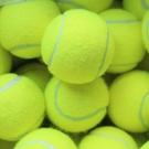 硬式網球 練習網球 台灣製 (空白)/一個入(定40) 硬式練習網球 壁球 毛毛球 MIT製-偉DFSTP-01