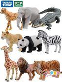 TOMY多美卡安利亞仿真野生小動物模型玩具狼獅子老虎大象熊貓鯊魚