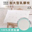 枕頭/ 乳膠枕-防蟎抗菌加大型乳膠枕2入...