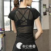 運動上衣-速干衣女T恤緊身罩衫鏤空蕾絲運動短袖健身衣瑜伽服跑步上衣-奇幻樂園