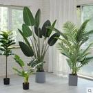 客戶專拍 仿真植物旅人蕉假綠植盆栽擺件大室內花天堂鳥樹客廳北歐植物裝飾 韓美e站