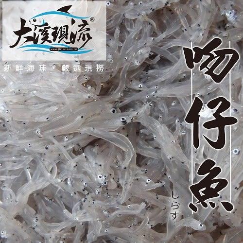 當季新鮮野生 魩仔魚 ( 200g±5%_ 盒 ) 【大溪現流】