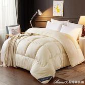 羽絨被95白鵝絨加厚冬被子單雙人冬季保暖6/10斤全棉被芯   艾美時尚衣櫥   YYS