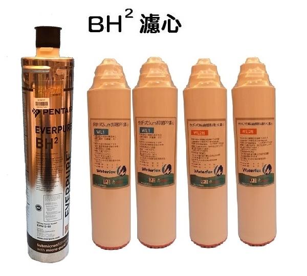 【水力士Waterlex無鈉軟水優惠組合價】愛惠浦公司貨抑垢+除鉛BH2濾心1入+拆纖維2支+無鈉樹脂2支