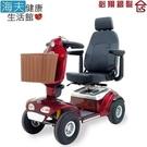 【海夫健康生活館】必翔 電動代步車 P型把手(TE-889N)