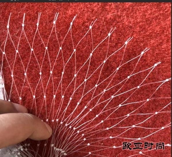 防鳥網 果園防鳥網果樹櫻桃葡萄防鳥用的網魚塘天網大棚防護尼龍網養殖網 歐亞時尚