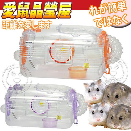 【培菓平價寵物網】SAIKO X-44》寵物愛鼠晶瑩屋中型鼠籠