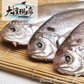 特選新鮮 肉鯧魚 ( 中尾 200g±10%_尾 )【大溪現流】