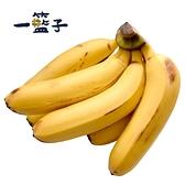 一籃子.旗山特級安全香蕉,共6把﹍愛食網