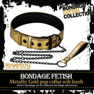 【成人情趣用品】BONDAGE FETISH SM虐戀霸王皮革鐵鍊頸環-金色