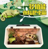 斜面全景刺猬飼養箱 子蜥蜴蛇水龜蜘蛛飼養箱寵物箱龜缸  汪喵百貨