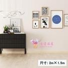 直播背景布 主播ins北歐風網紅簡約裝飾室內牆紙抖音拍攝攝影掛布T